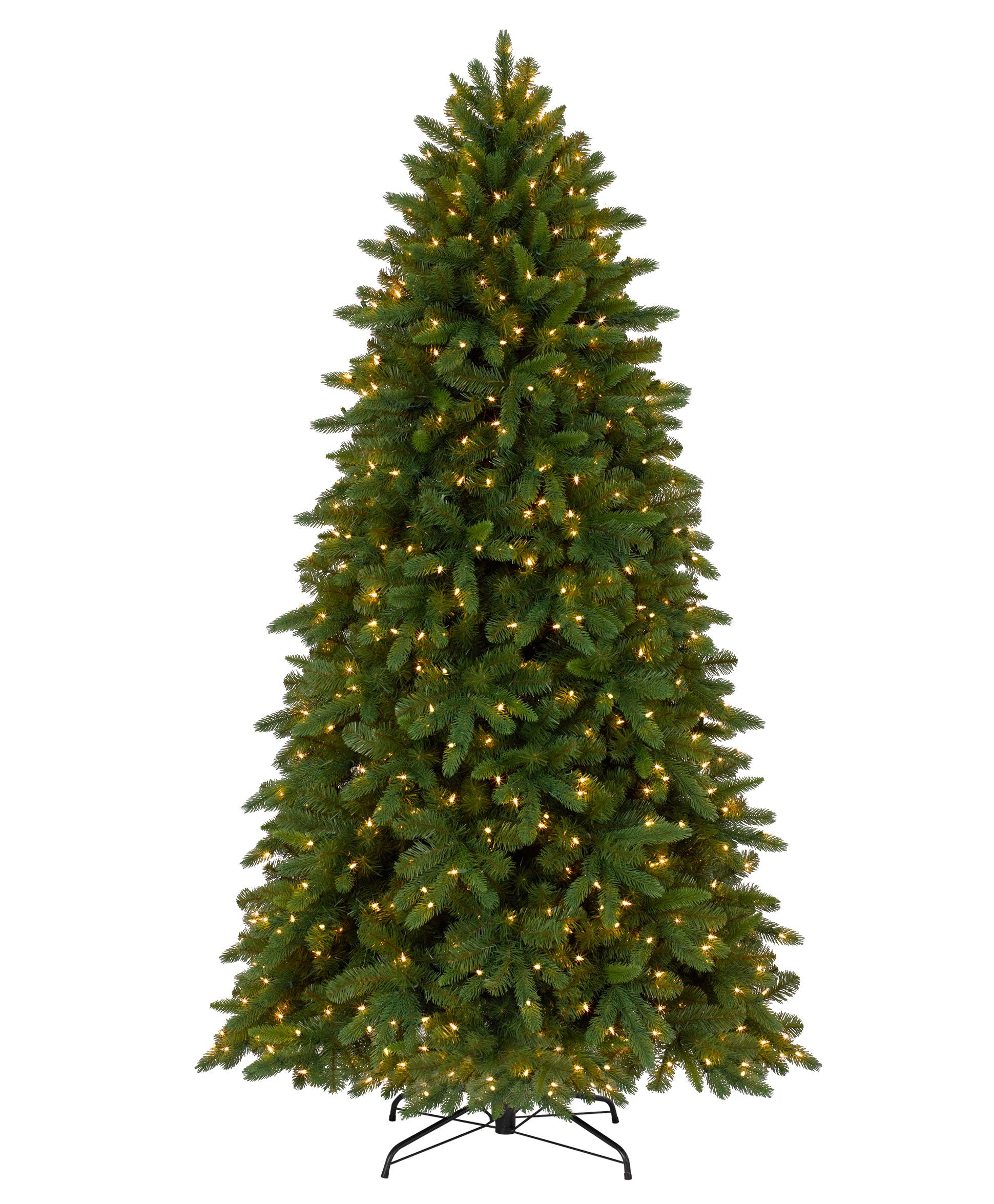 Fraser Fir Christmas Tree